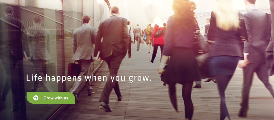 Grow Consulting Website banner web2